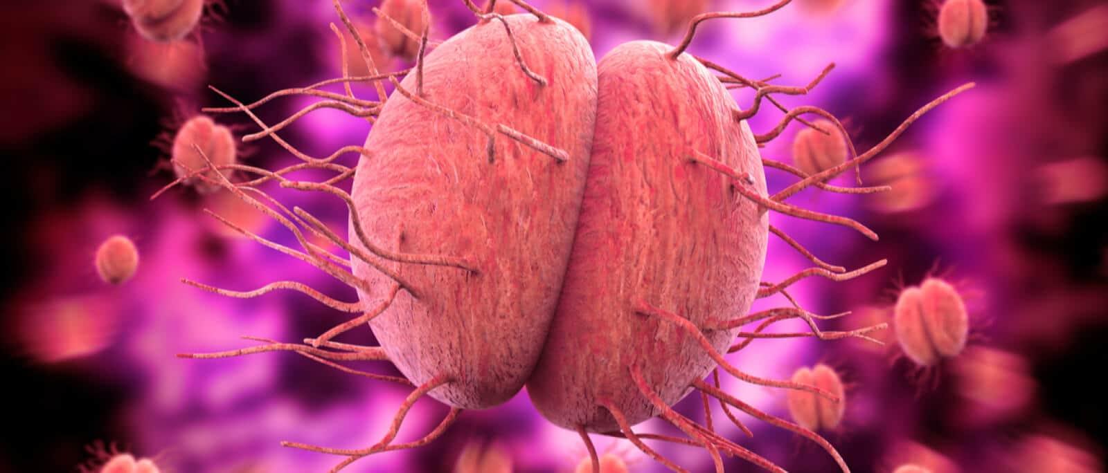Gonorreia Sintomas no Homem e na Mulher, Causas e Tratamento